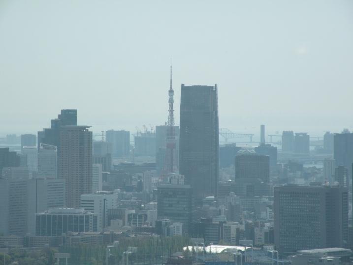 Tokyo Tower vista do Tokyo Metropolitan Government Building
